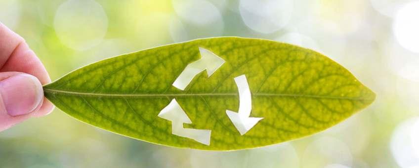 depa ecologico actual inmobiliaria