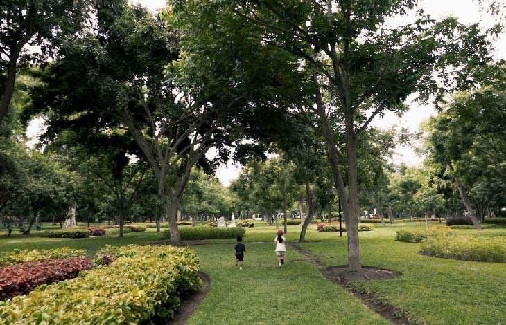 Parque Ernesto Alayza