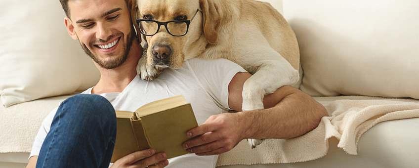 5 consideraciones al buscar un departamento que acepte mascotas