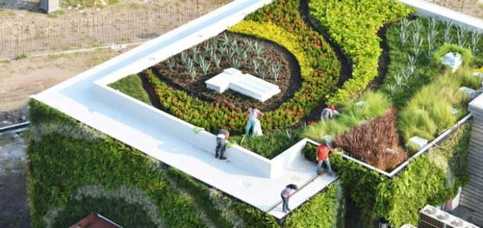 que son techos verdes 2